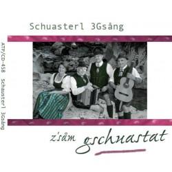 Schuasterl 3Gsâng - z´sâm gschuastat