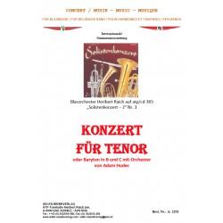 Konzert für Tenor