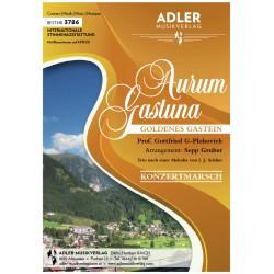 Aurum Gastuna (Goldenes Gastein)